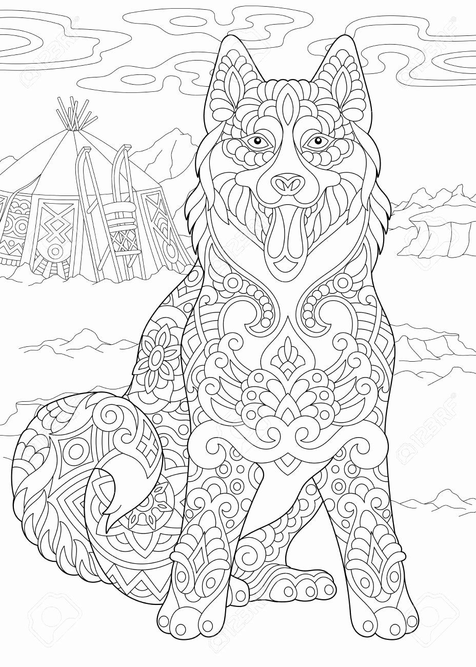 Pin On Top Animals Coloring Pages [ 1300 x 928 Pixel ]