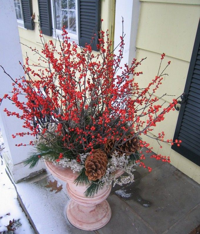 Container Gardening Ideas For Winter Ideas