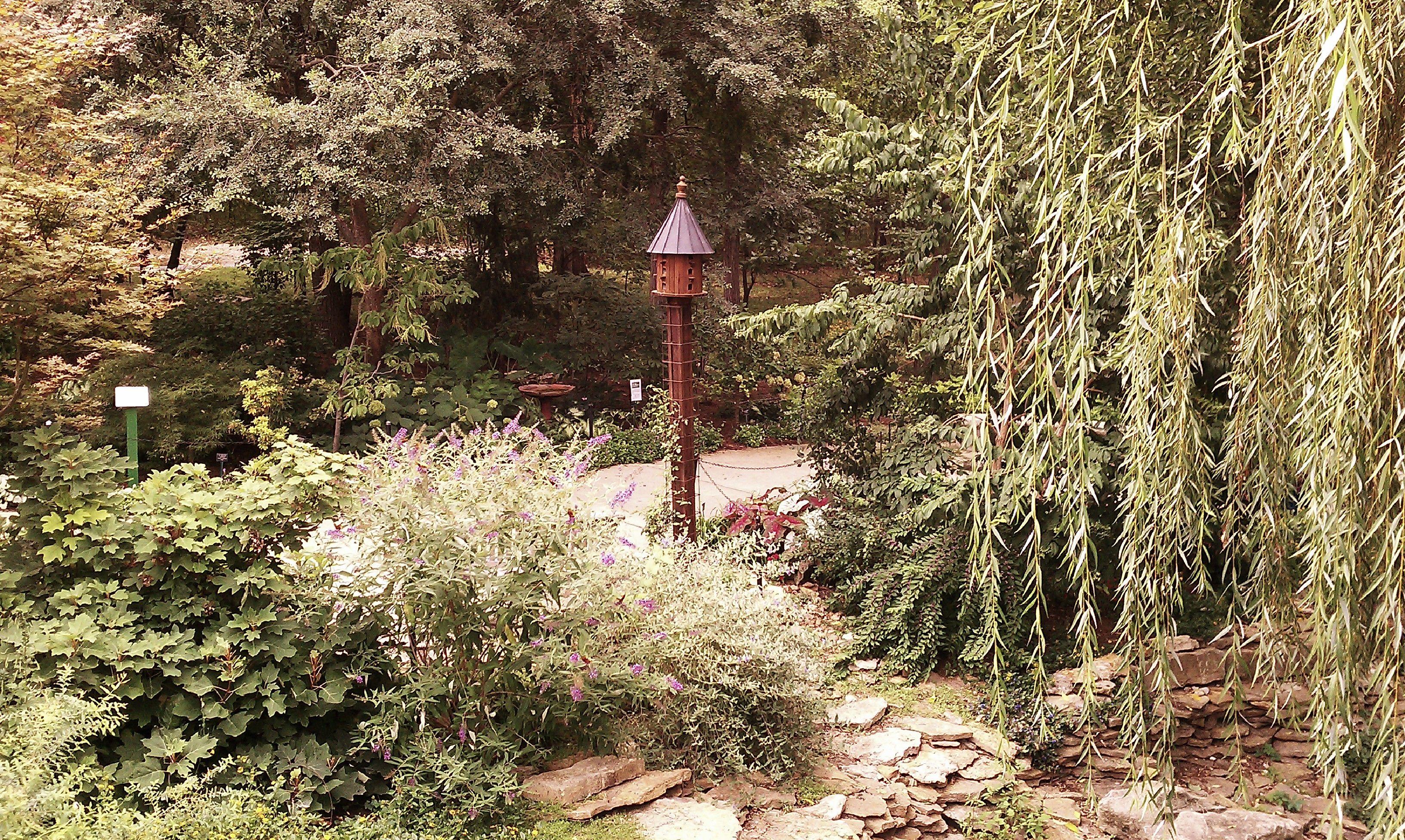 Overland Park Arboretum Holiday Luminary Walk. | Arboretum and ...