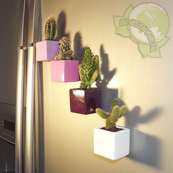 Cactus Magnetique Be Green Pot Vert Anis 6x6x6cm Appart