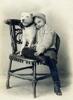 I love this collection of pictures from long ago before Pitt bulls got their 'bad' reputation label.  It's really not the dogs fault!