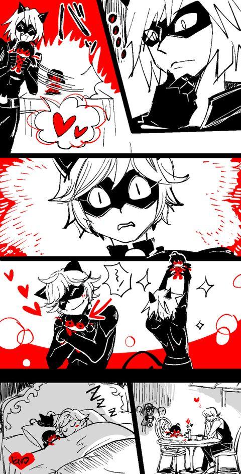 2D Cat Noir U0026 3D Cat Noir (comic 2/2) (Miraculous Ladybug)