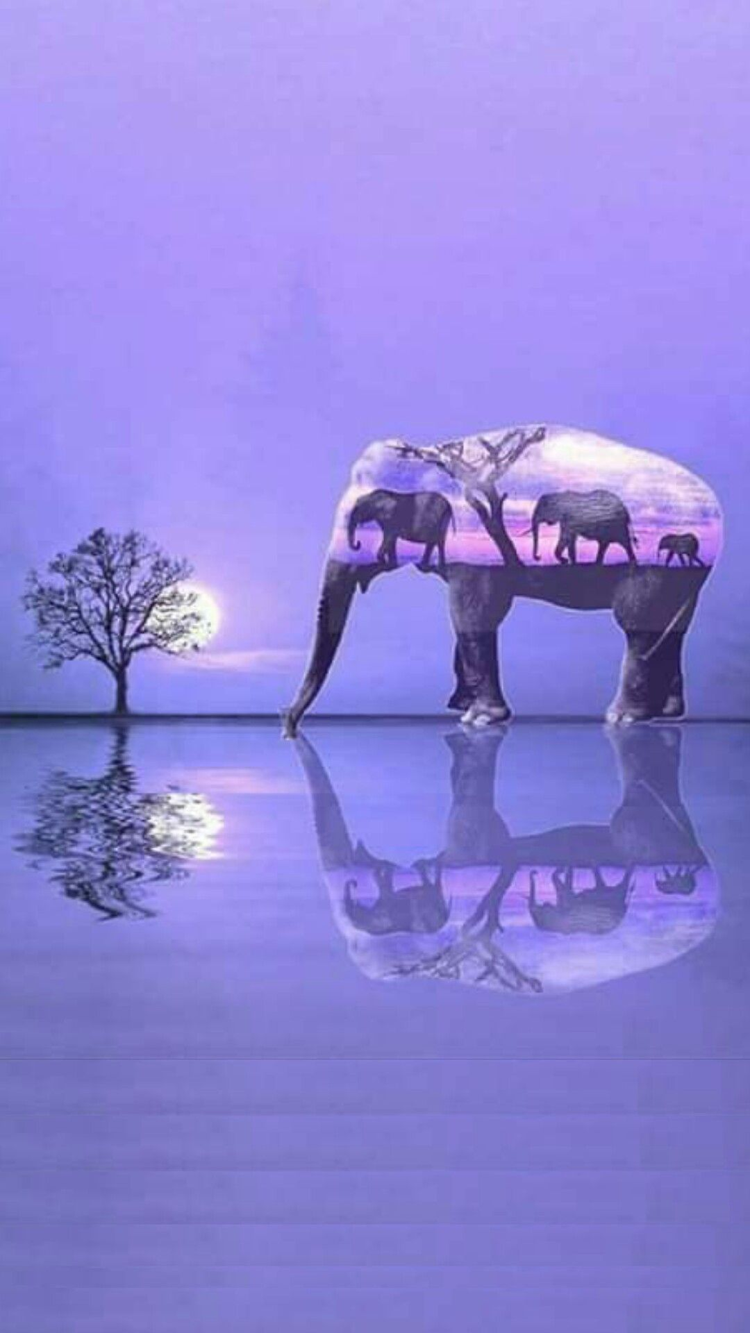 Hello This Is So Beautiful Would Love To Know Where You Got It From Thanks Marilyn Merillion On Pi In 2020 Elephant Artwork Elephant Pictures Elephant Wallpaper