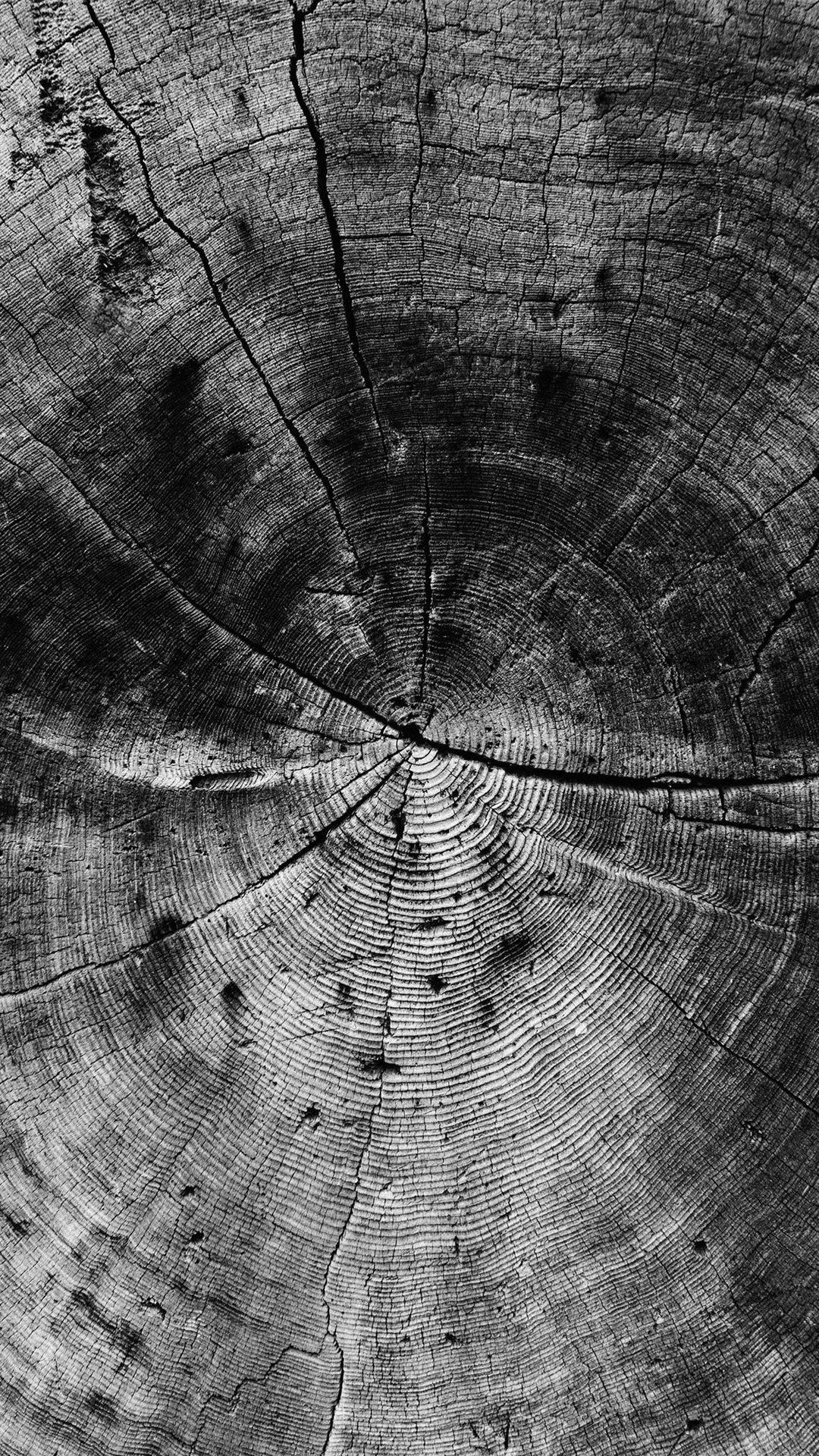 Wood Line Texture Old Dark Pattern Bw iPhone 6 plus