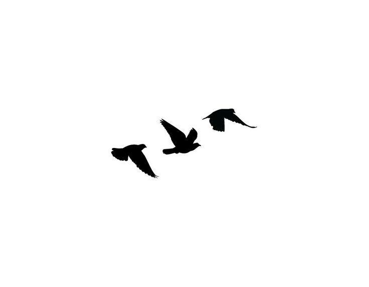 09db7aad41306c74e33bf751c93fdf4d Jpg 736 572 Bird Silhouette Tattoos Flying Bird Tattoo Small Bird Tattoos