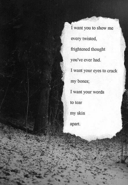 Dark Poetry | Woods & Quote | Mixed Media Collage | Black & White Photography | Forest | Mysterious Words