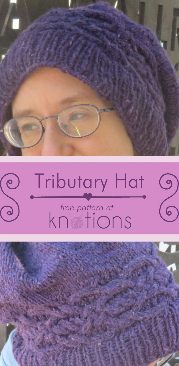 Tributary Hat | Aran weight yarn, Celtic knots and Knit hats