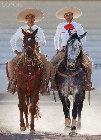 c7d929dcdc0fb Pura Raza Espanola Yeguada Herrera Caballos Espanoles Caballos Bailadores  Andalusian Lusitano Lippizzaner spanish horse Piccador Vaquero Charro
