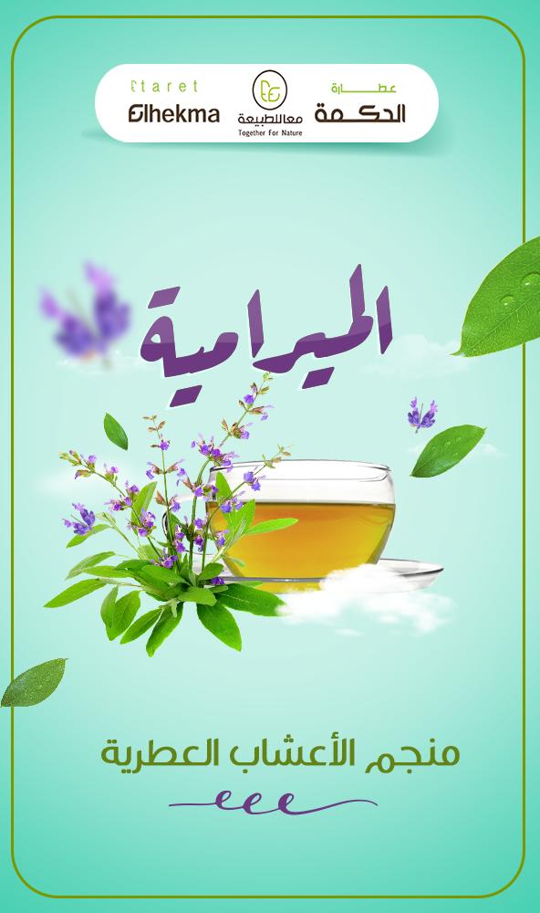 6 أسباب تجعل الميرامية منجم الأعشاب العطرية المعمرة فهي 1 لها قدرة فعالة علي مقاومة العديد من الأمراض 2 تحافظ علي معدل ضربات Natural Herbs Nature Oio