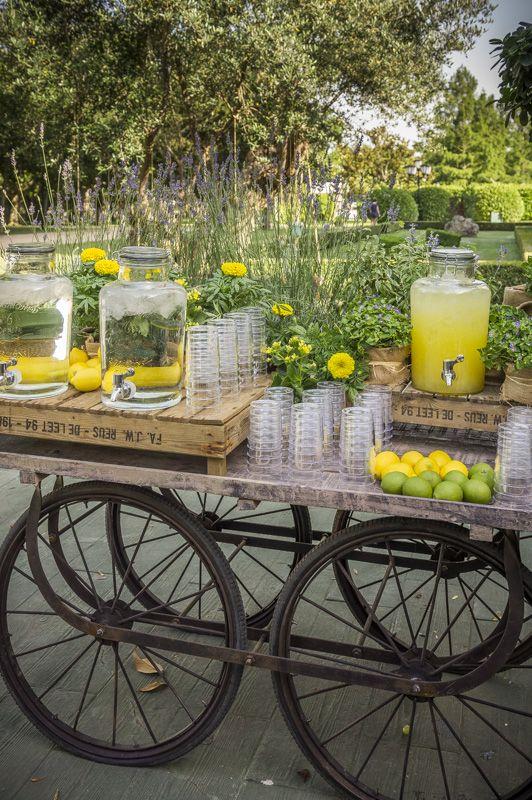 Fica El Campillo. Carrito de limonada. www.mardeflores.com