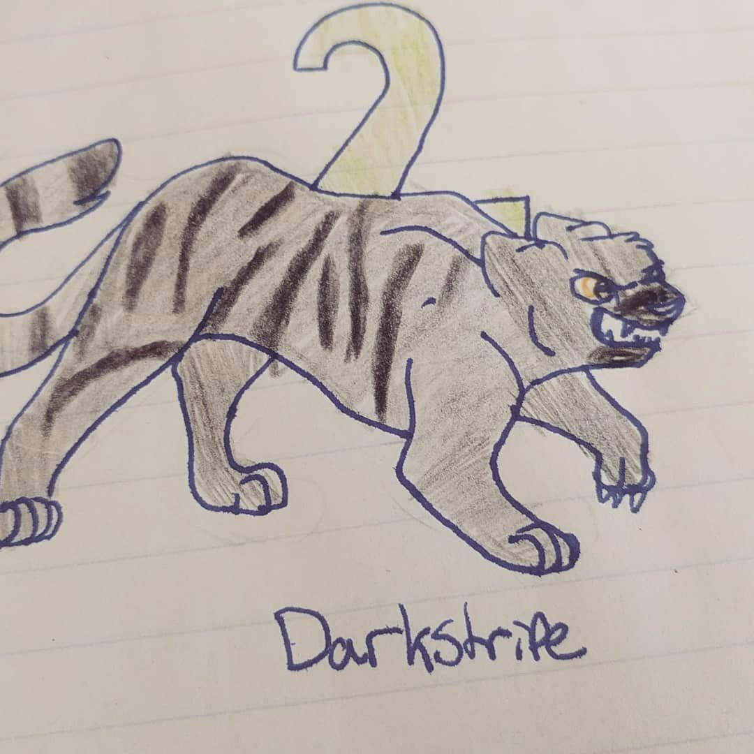 Warrior Cat Drawing Book Beautiful Darkstripe Instagram S