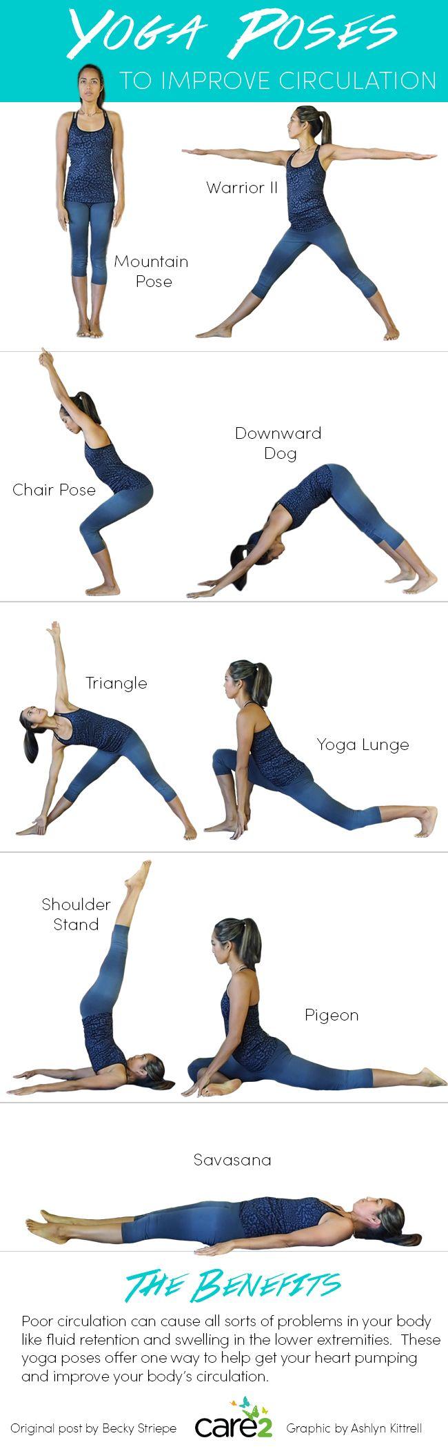 Yoga Poses to Improve Circulation  Yoga postures, Yoga benefits