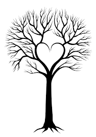 leafless tree drawing google search family tree ideas tree