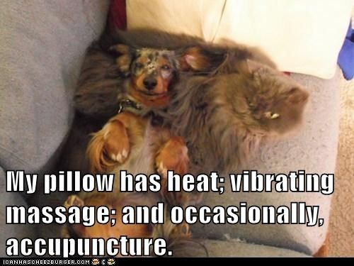 My pillow has heat; vibrating massage; and occasionally, accupuncture