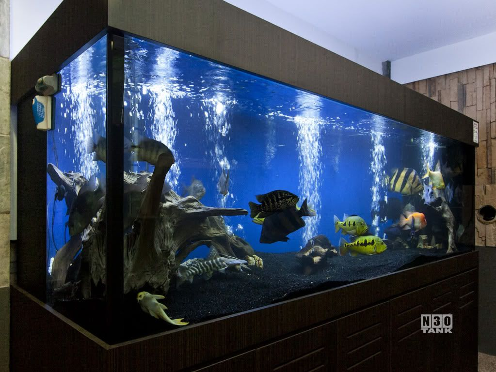 Stainless steel fish tank stand google search modern for Fish tanks with stands