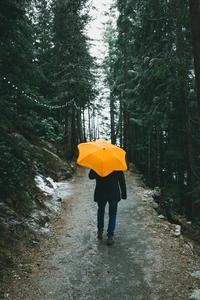 BLUNT umbrellas | The World's Best Umbrellas #bestumbrella