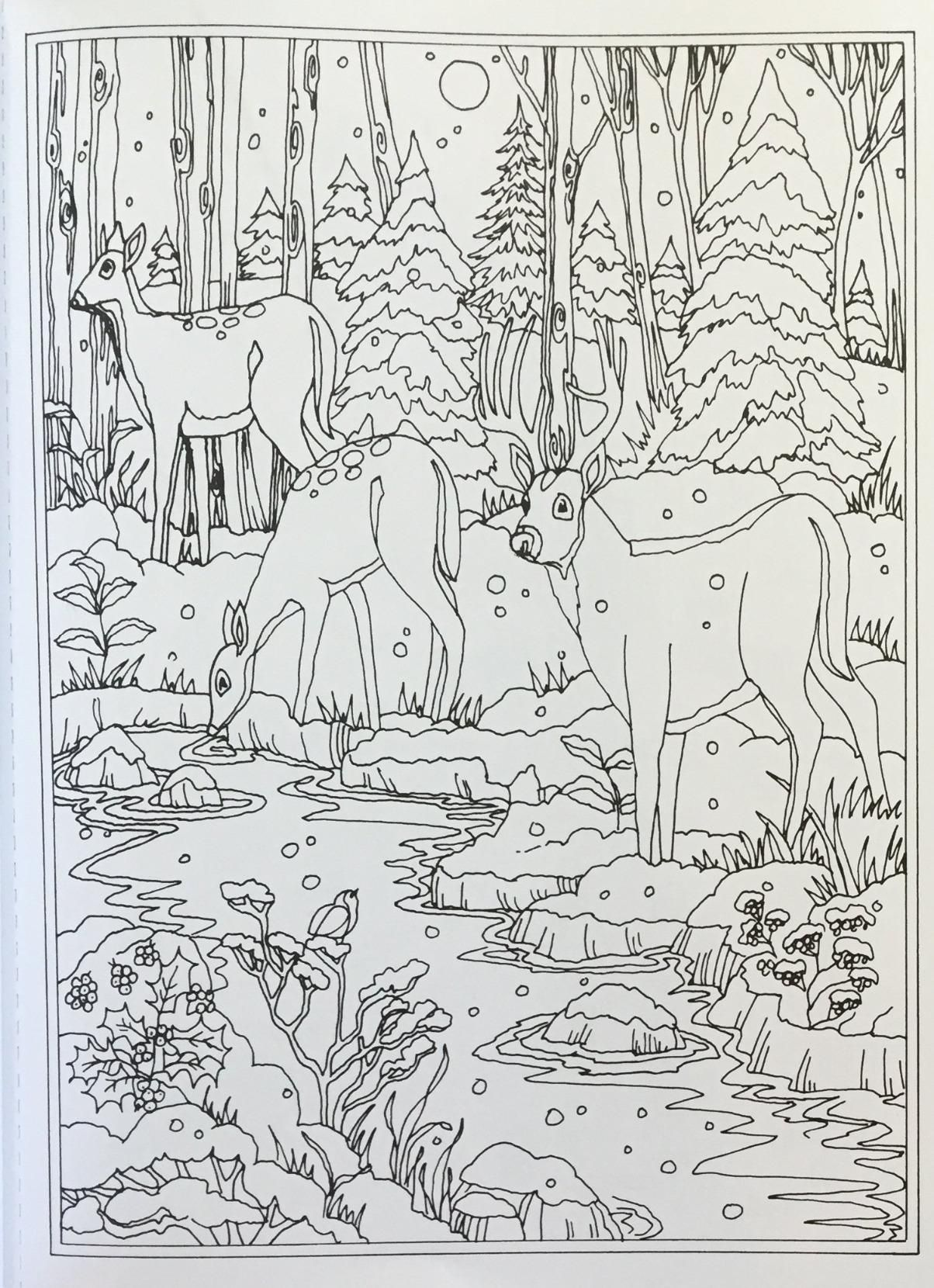 Amazon Creative Haven Winter Wonderland Coloring Book Adult