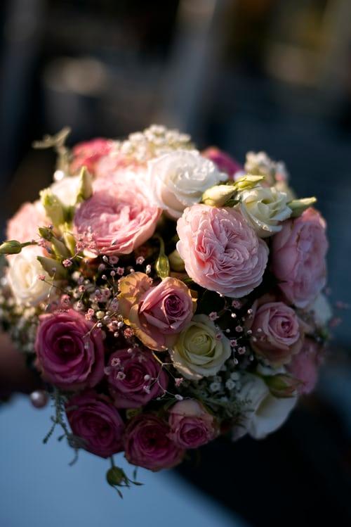 باقة ورد جميلة باقات ورد صباحية جميلة جدا باقة ورد كبيرة Zina Blog Flower Market Rose Flower Colorful Roses