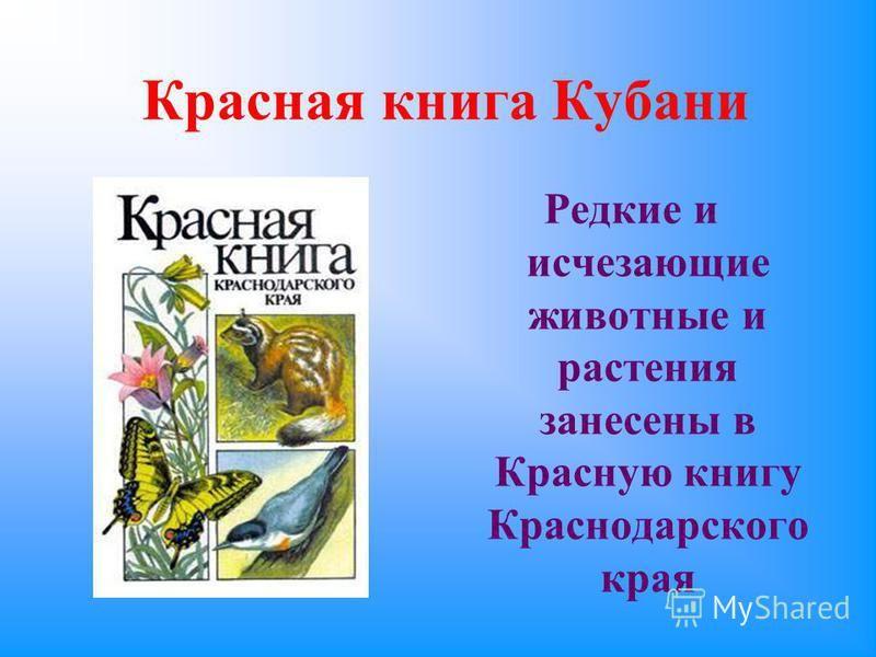 Красная книга кубани скачать бесплатно