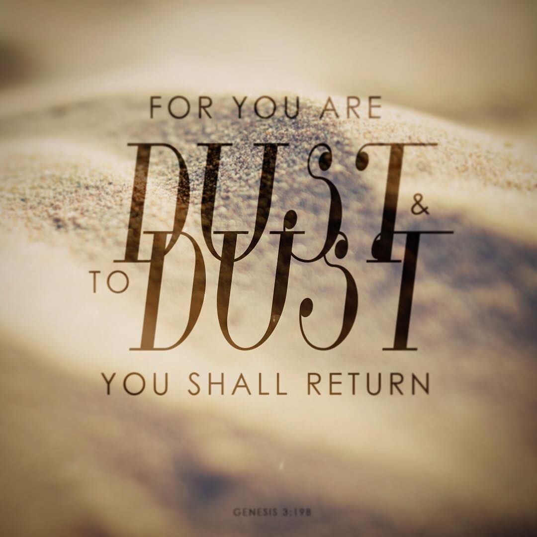 Image result for from dust to dust