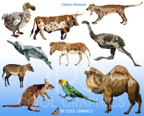 40+ Animal Hunt Animal Clipart