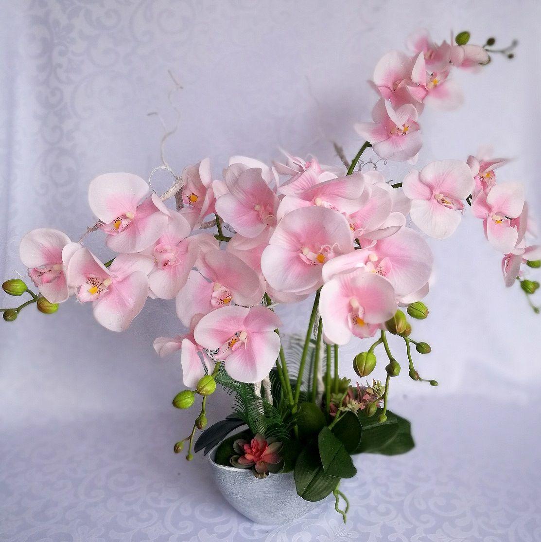 Swiateczne Atelier Rozowy Storczyk W Szarej Donicy Nr 128 Orchids Plants