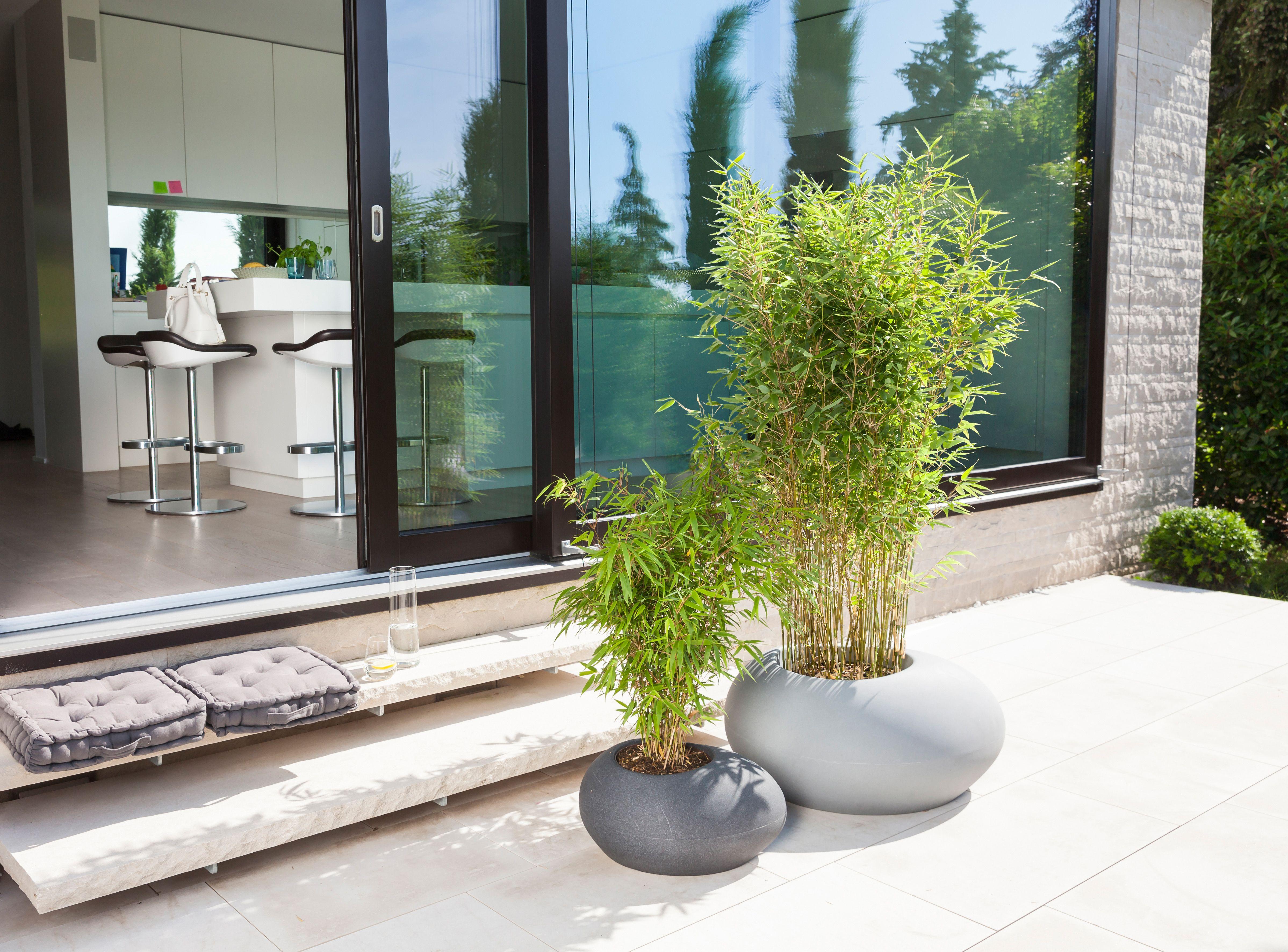 Designerska Doniczka W Ksztalcie Kamienia Na Taras Flow Freshwater Plants Container Gardening Flower Pots