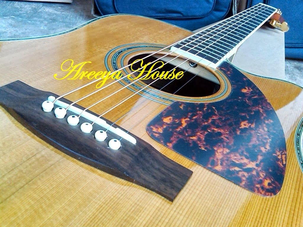 Zager Guitars Zager Reviews Guitar Acoustic Guitar Guitar Images