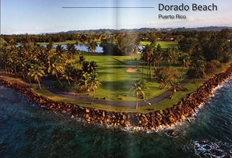 Golf Course In Puerto Rico Dorado