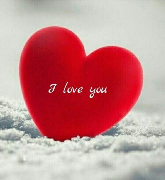 Download Latest Romantic Whatsapp Images Love Wallpaper For Whatsapp Dp Love Images Good Morning Love Love Wallpaper