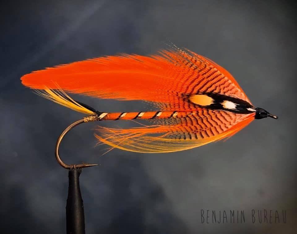 Pin On The Art Of Flies Ii
