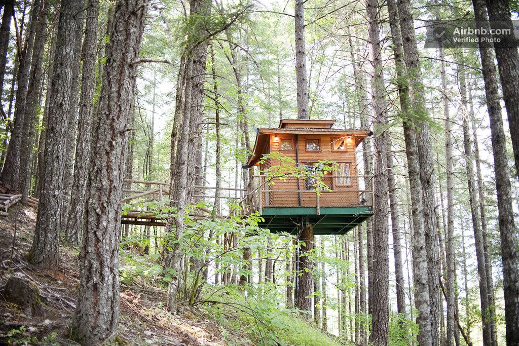 6x Inspirerende Boomhutten : The shitake airbnb #glamping #camping #cabin #treehouse pinterest