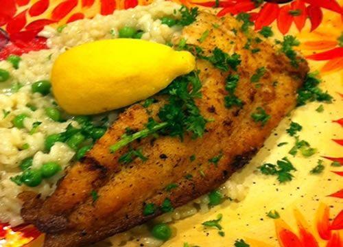 Gluten Free Fried Flounder Recipe