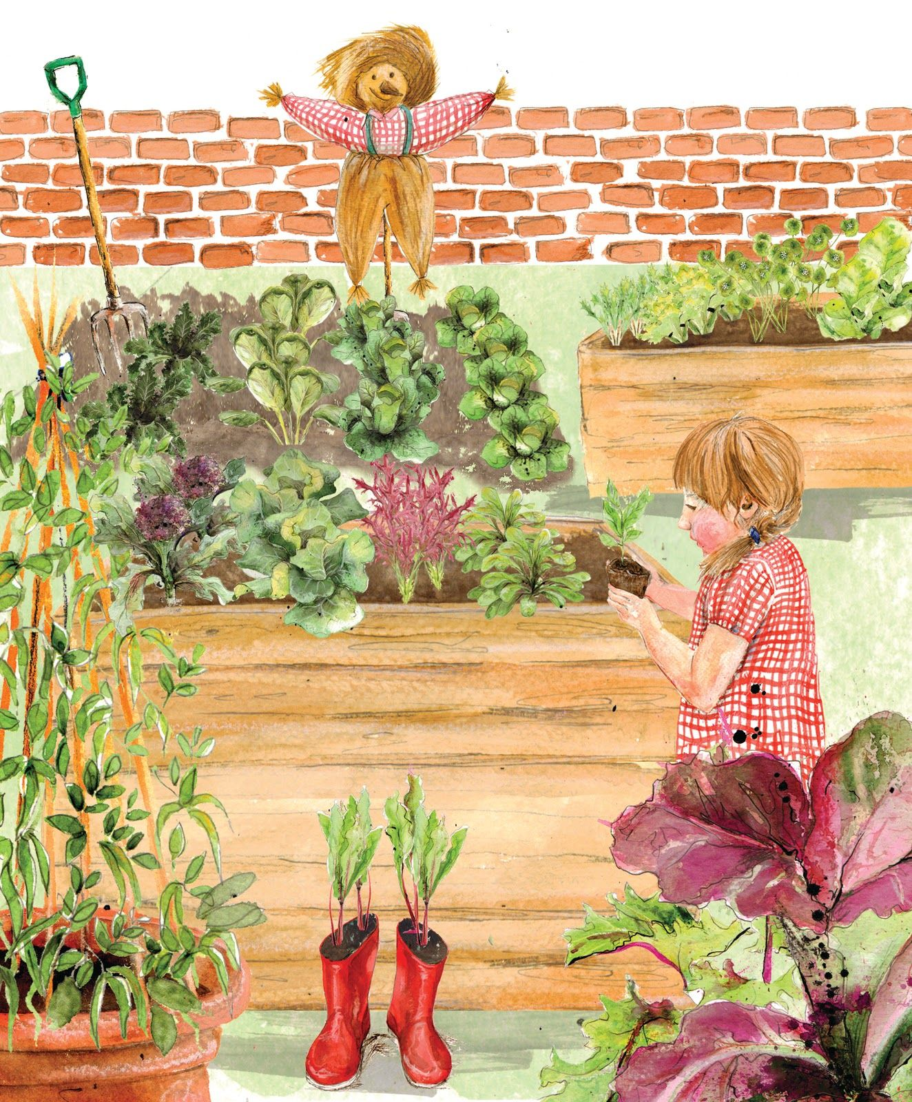 1000  images about thema zaaien en planten in de klas on pinterest ...