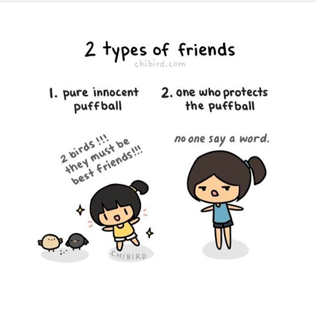 Puffball protector (alternative image)  #cute #friends