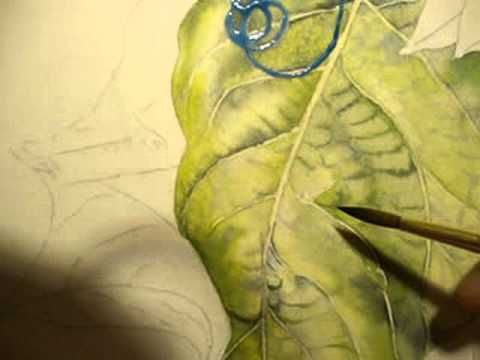 How To Paint Around Veins Of A Leaf In Watercolor Part 3