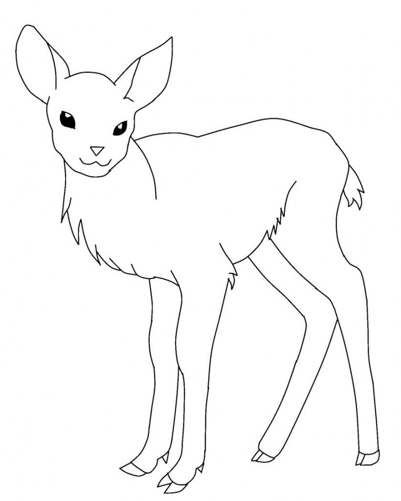 cool Baby Deer Free Coloring Pages | Colouring Pages | Pinterest ...