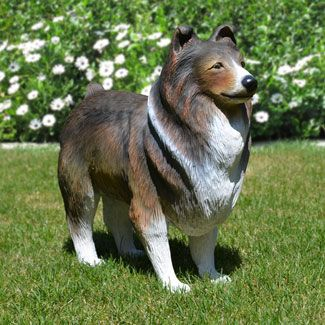 Life Size Sheltie Dog Statue Stands 21 7 Inches High This