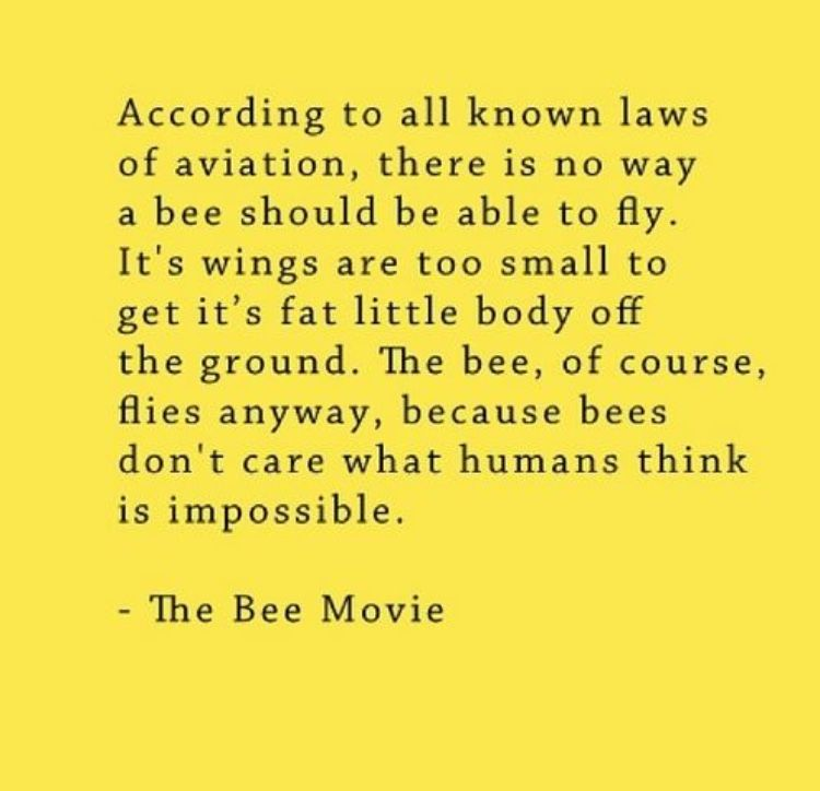Bee Movie Intro Bee Movie Quotes Bee Movie Bee Movie Script
