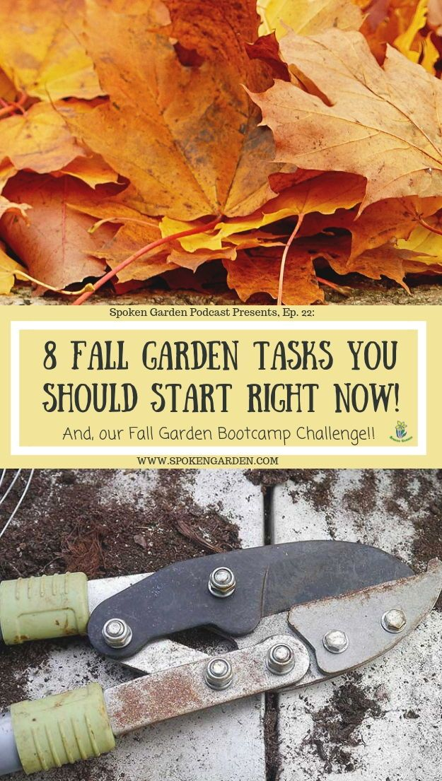 Spoken Garden 8 Fall garden tasks & Fall Challenge