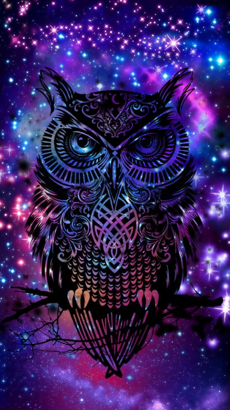 65+ Galaxy Owl Wallpapers Download at WallpaperBro Owl