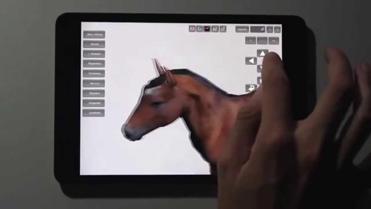 Datos Agrop. Software 3D de anatomía del caballo para el iPad ...