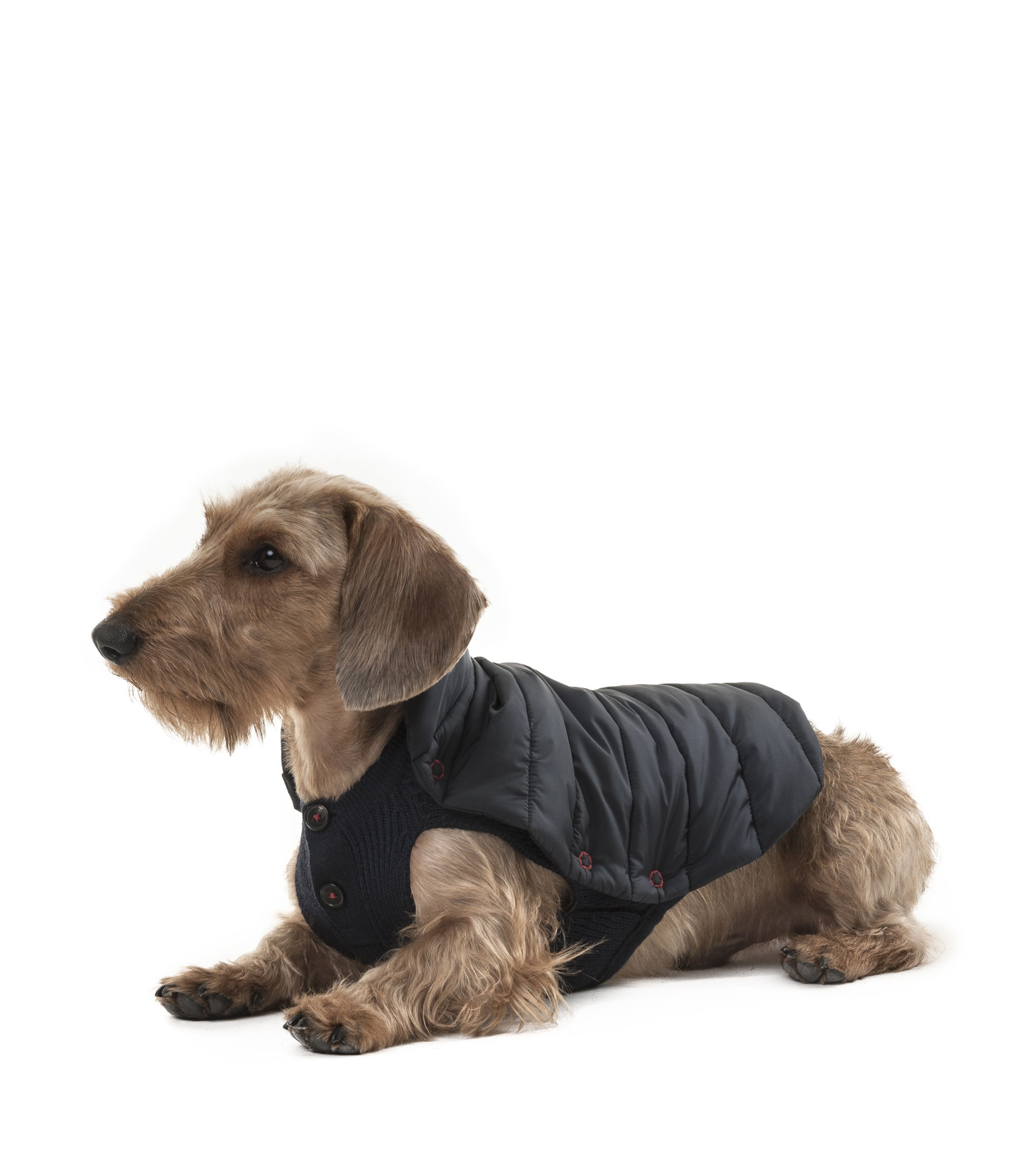 POLDO DOG COUTURE - CORTINA Coat with removible top in matt nylon and wool sweater. Water-repellent treatment. #poldodogcouture #poldo #dog #couture #coat #sweater #dachshund #teckel #dogoutfitters