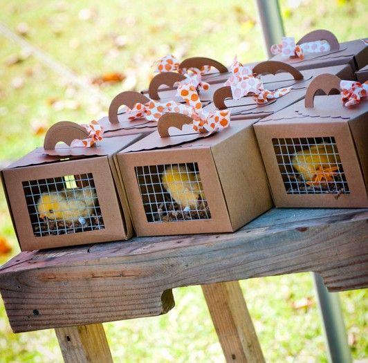 Chick favors for a pumpkinfarm party Confetti Couture Events