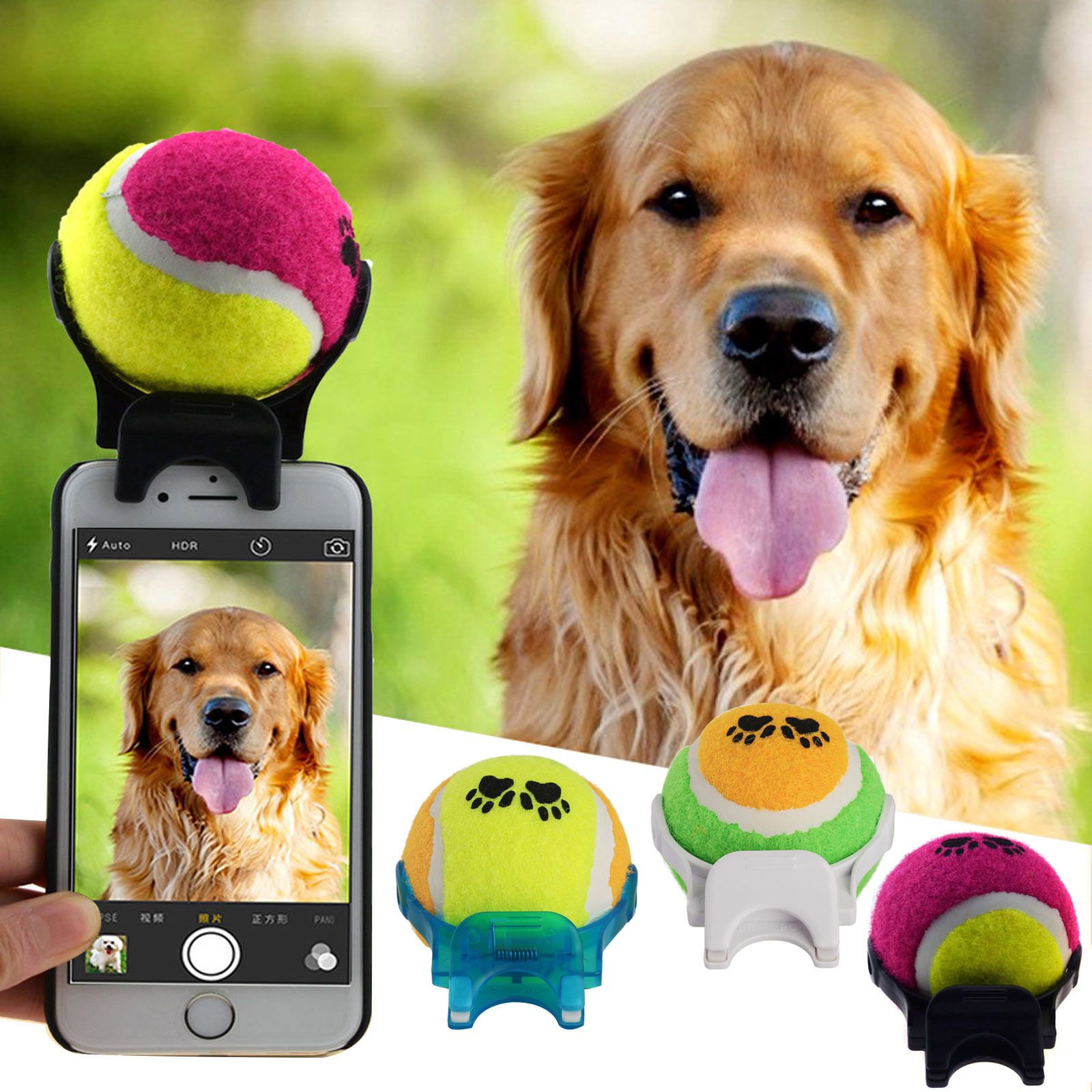 An ingenious accessory for the perfect selfie with a dog