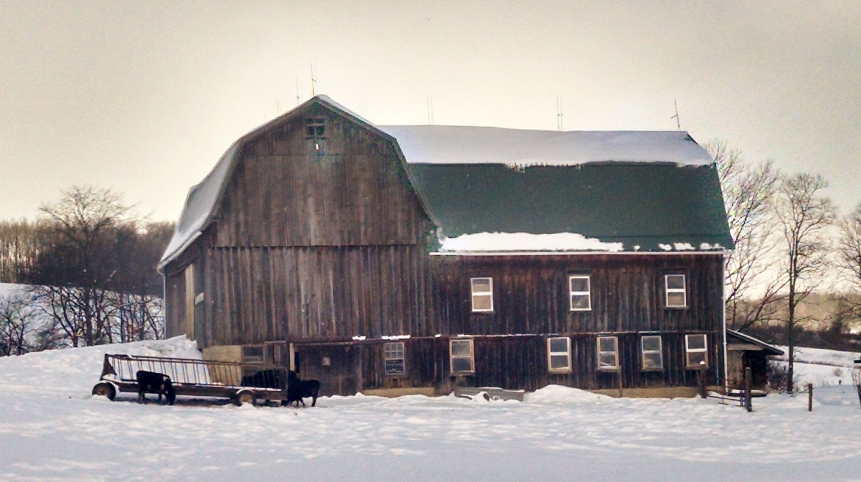 Machias Barn