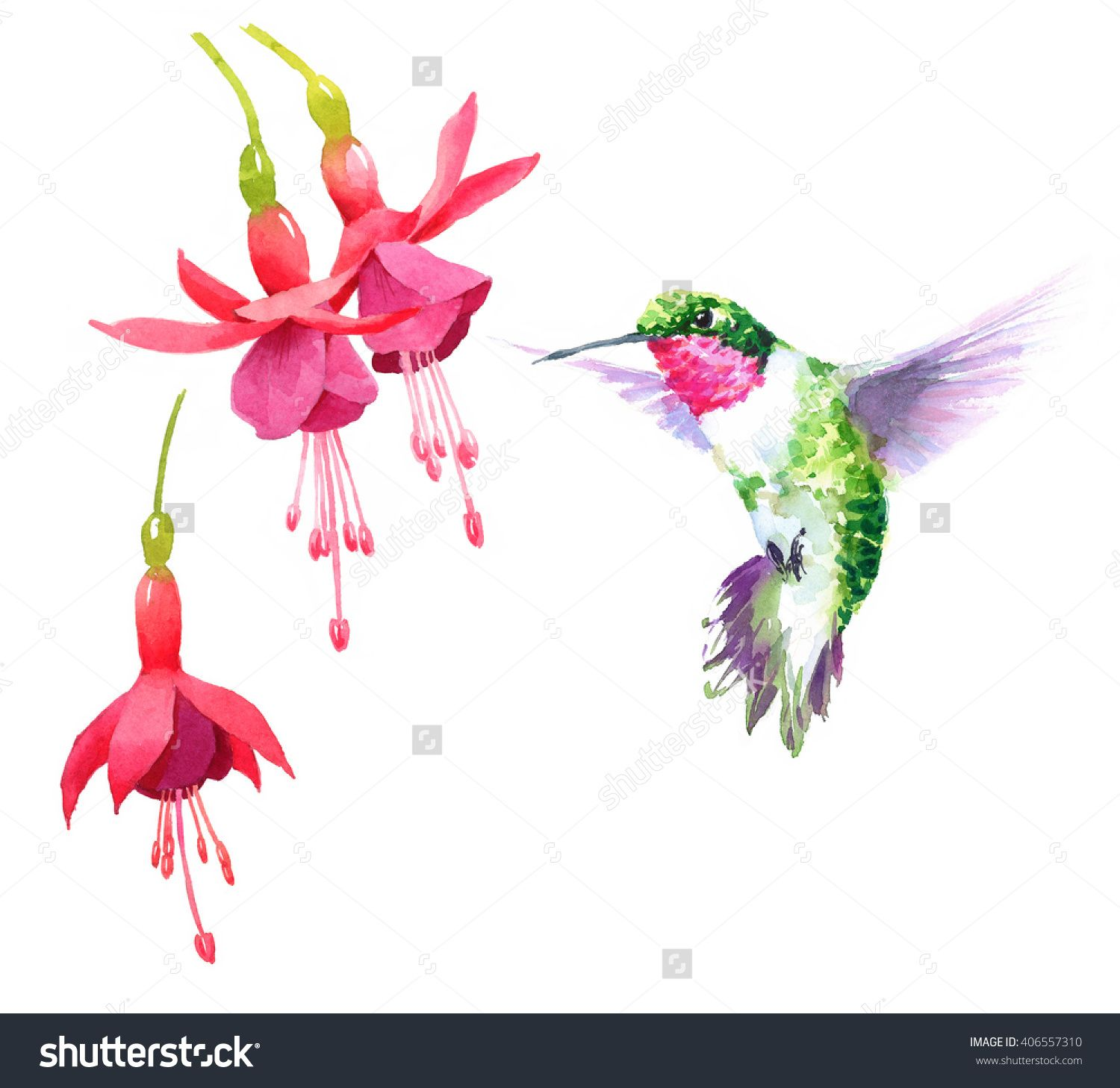 best hanging above audobon one bath ground attracting and feeder bird for station kit gallon wide birds hummingbird about feeders nice feeding tall wild x multi stations a height com premium image wooden