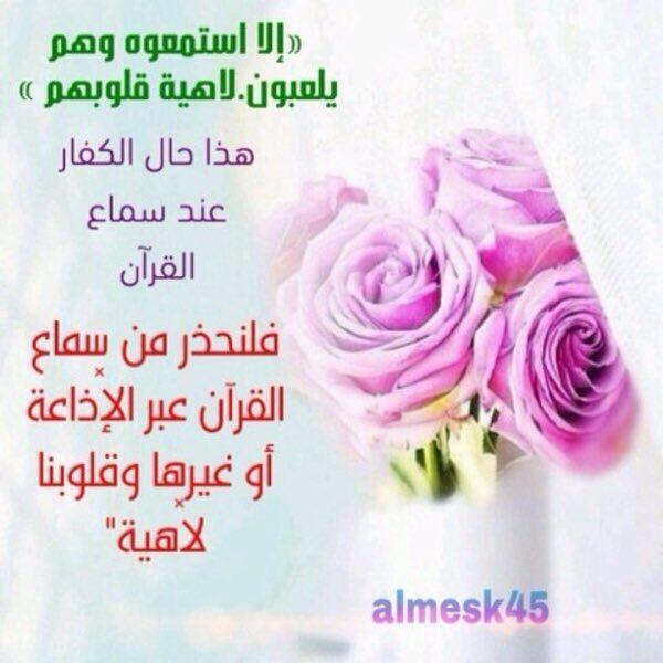 6 تويتر Rose Flowers Plants