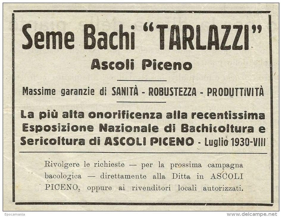 """Pubblicità Sme Bachi """"Tarlazzi"""" Ascoli Piceno"""