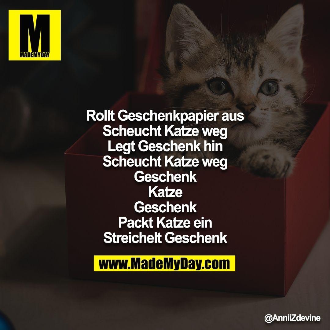 #katzengeburtstag